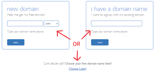 Domain Name to create a website